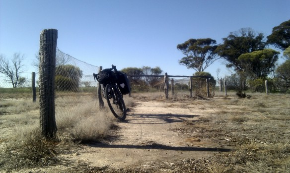 The Baum rests at Rabbit Proof Fence No 2