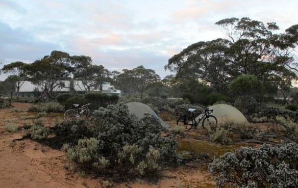 Bush camping between Nullarbor and Yalata.