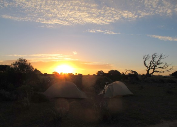 Bike touring on the Nullarbor