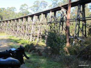 Another magnificent trestle bridge, east of Nowa Nowa