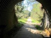Tunnel on the East Gippsland Rail Trail